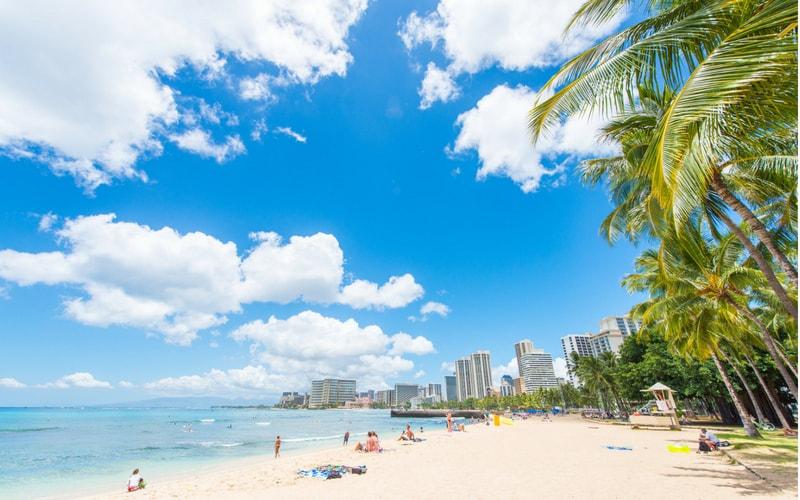 ハワイ,アロハデータ,旅行,WiFi